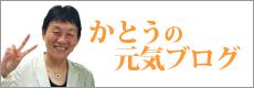 かとうブログ